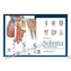 Atlas anatomii człowieka Sobotta. Tom 1-3 + Tablice anatomiczne mięśni, stawów i nerwów