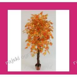PIĘKNE sztuczne drzewko KLON ZŁOCISTY extra ozdoba