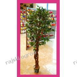 FIKUS drzewko sztuczne 175cm
