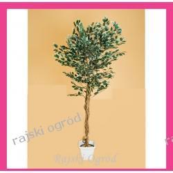sztuczne drzewko FIKUS BENIAMIN 160cm dekoracja