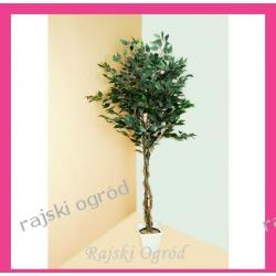 sztuczne drzewko FIKUS ciemny liść 160cm dekoracja