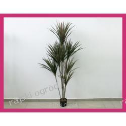 JUKA X8 190cm YUCA YUCCA JUCCA sztuczny kwiat