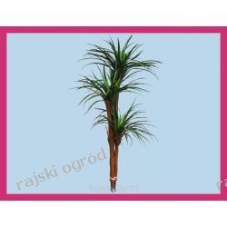 JUKA 3 sztuczne drzewko sztuczny kwiat 150cm