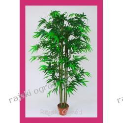 drzewko sztuczne BAMBUS ~165cm - POLECAMY