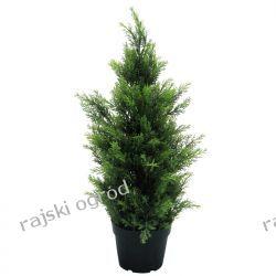 sztuczne drzewko CYPRYS TUJA BRABANT 60cm kwiat