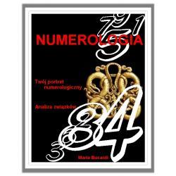 DVD - NUMEROLOGIA - portret numerologiczny, cyfry urodzenia, losu i przeznaczenia