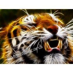 Jasnowidzenie - Twoje aktualne Zwierze Mocy - Duch opiekunczy -  przekaz Sily Wyzszej przepowiednia