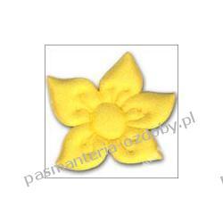 APLIKACJE -kwiat narcyz (5,8 x 6cm) różne kolory/3