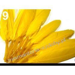 KACZE PIÓRA, KOLOROWE PIÓRKA  WINETOU 9-14 cm - żółte