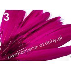 KACZE PIÓRA, KOLOROWE PIÓRKA  WINETOU 12-14 cm - amarantowy Akcesoria i gadżety