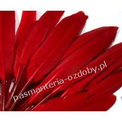 KACZE PIÓRA, KOLOROWE PIÓRKA  WINETOU 12-14 cm - czerwony Akrylowe