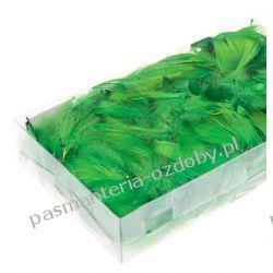 PIÓRA, PIÓRKA DEKORACYJNE 10g ok. 200szt - zielone