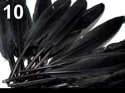 Kacze Pióra Kolorowe Piórka Winetou 9 14 Cm Czarne