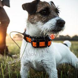 Dodatkowa Obroża Garmin T 5 MINI z funkcją śledzenia psa