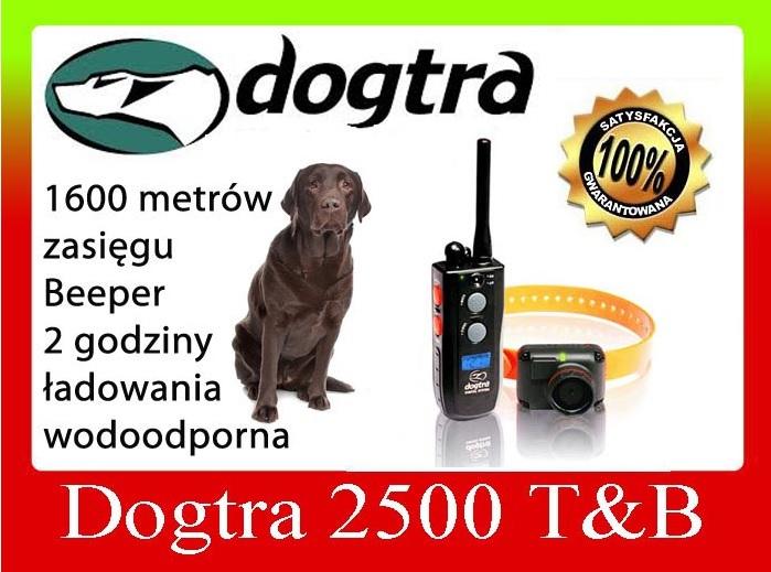 obroża elektryczna DOGTRA 2500 T&B