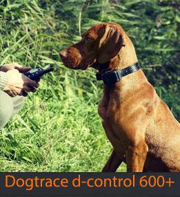obroża elektryczna Dogtrace 600