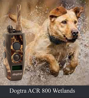 obroża elektryczna Dogtra acr 800