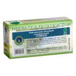 LUMBAGO przeciwreumatyczna herbatka ekologiczna saszetki 20x2g