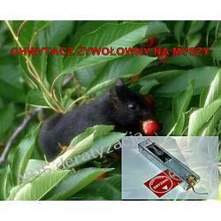 Pułapka na myszy CHWYTACZ ŻYWOŁOWNY  JOANNA