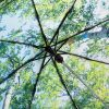 Parasol FARE 5593 FARE-Nature