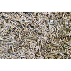 Mieszanka traw dla ptakow 500 g /ekspres/4,00 zł Pozostałe
