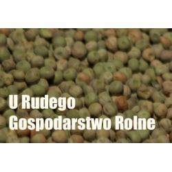 GROCH ZIELONY DLA PTAKOW GOLEBI PAUPUG  Karmy i smakołyki
