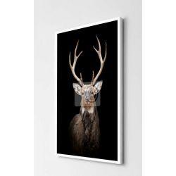 Obrazy z jeleniami Antyki i Sztuka
