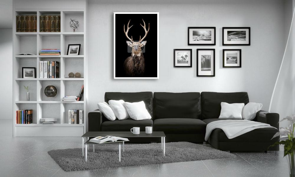 obraz jelen