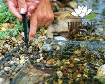 AquaNet 4 x 8 m oczka_wodne Oase - siatka zabezpieczająca przed liśćmi  POZNAŃ