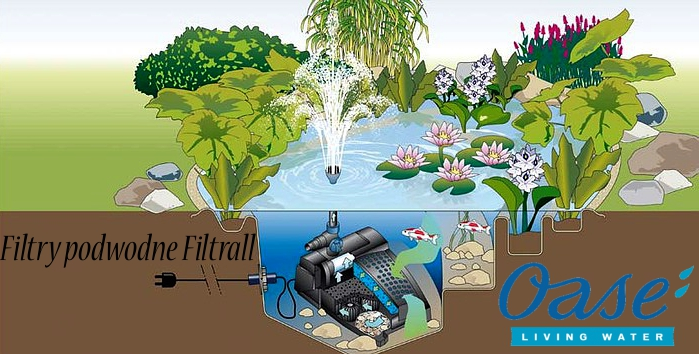http://img.bazarek.pl/234904/14942/shopfiles/filtry_podwodne_filtrall_oase_living_water_polska.jpg