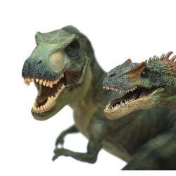 Fototapeta RASCH Magic Walls III dinozaury DINOSAURS 892604...