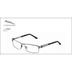 Okulary męskie Jaguar 33558