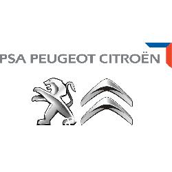 2444CF PSA Peugeot Citroen CENA 580 PLN LINKA ZMIANY BIEGÓW KPL. CITROEN PEUGEOT