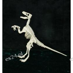 Szkielet velocirptora