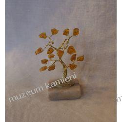 Drzewko z bursztynu