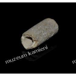 Belemnit SKAM28 - 80 mln lat - skamieniałość