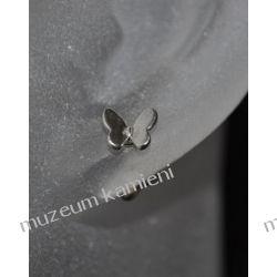 Motylki - kolczyki srebro próby 925 KWK097