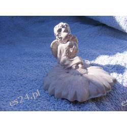 Aniołek siedzący na kwiatku