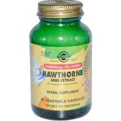Solgar, Hawthorne Herb Extract, 60 Veggie Caps