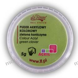 Puder akrylowy kolorowy 5g ZIELONA KONICZYNA