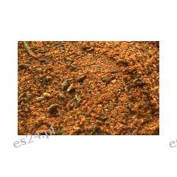 Czubryca czerwona 500 g