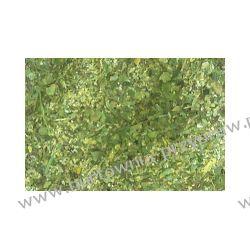 Czubryca zielona 250 g