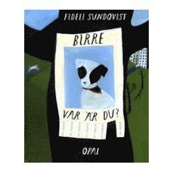 Birre, var är du? - Fideli Sundqvist - Bok (9789172994171)