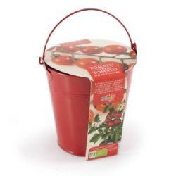 Kirschtomate im Zink Eimer zum Züchten - Geschenke Tipp