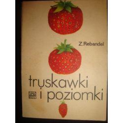 TRUSKAWKI I POZIOMKI - ZOFIA REBANDEL_C2