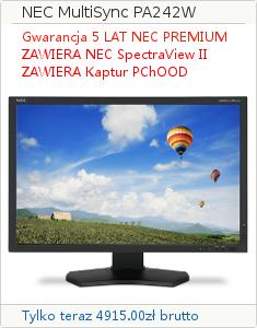 NEC PA242
