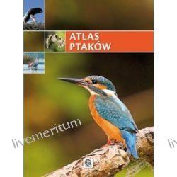 Atlas ptaków