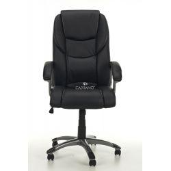 Fotel biurowy Epileus - czarny...