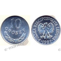 10 groszy 1981 mennicza Monety groszowe