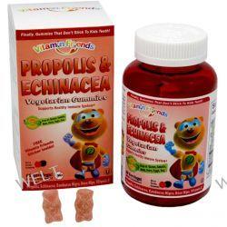 Vitamin Friends, PropoBear, Propolis & Echinacea Gummies, Berry, 60 Pectin Bears